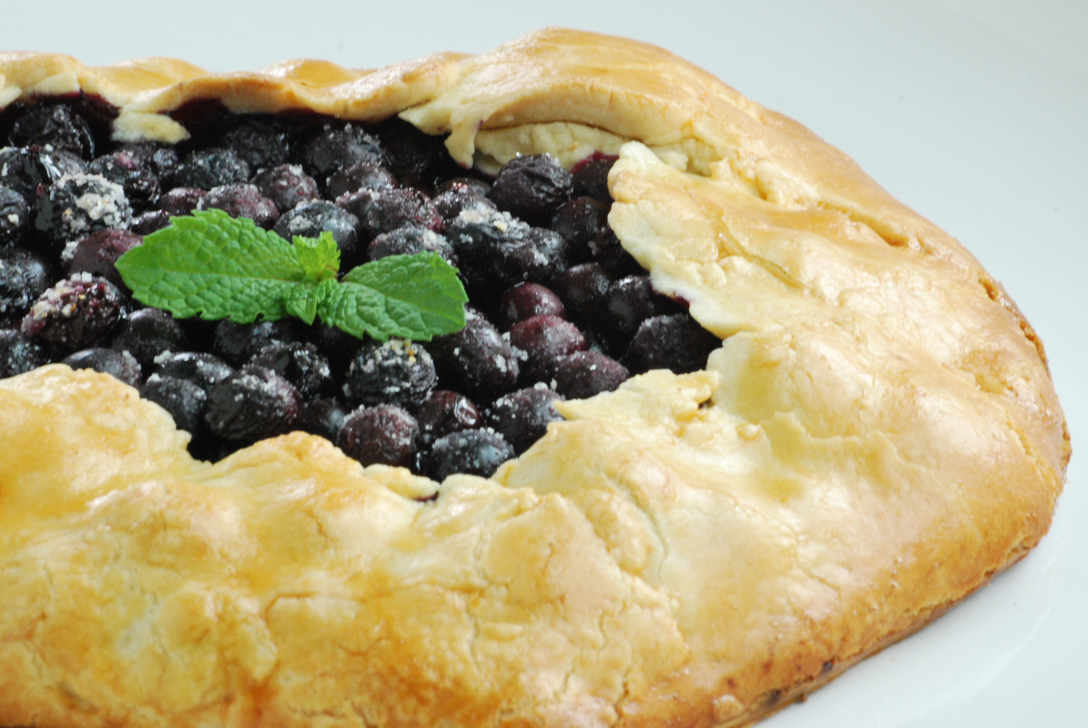 Blueberry Galette | Relishing It