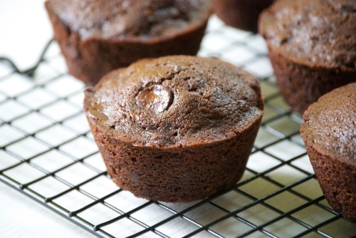 Healthy Chocolate Zucchini Muffins | Relishing It
