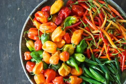 Garlic Habanero Hot Sauce | Relishing It