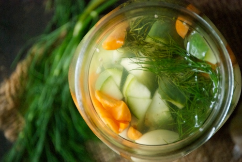 Crunchy Refrigerato Pickles with Garlic + Dill | Relishing It
